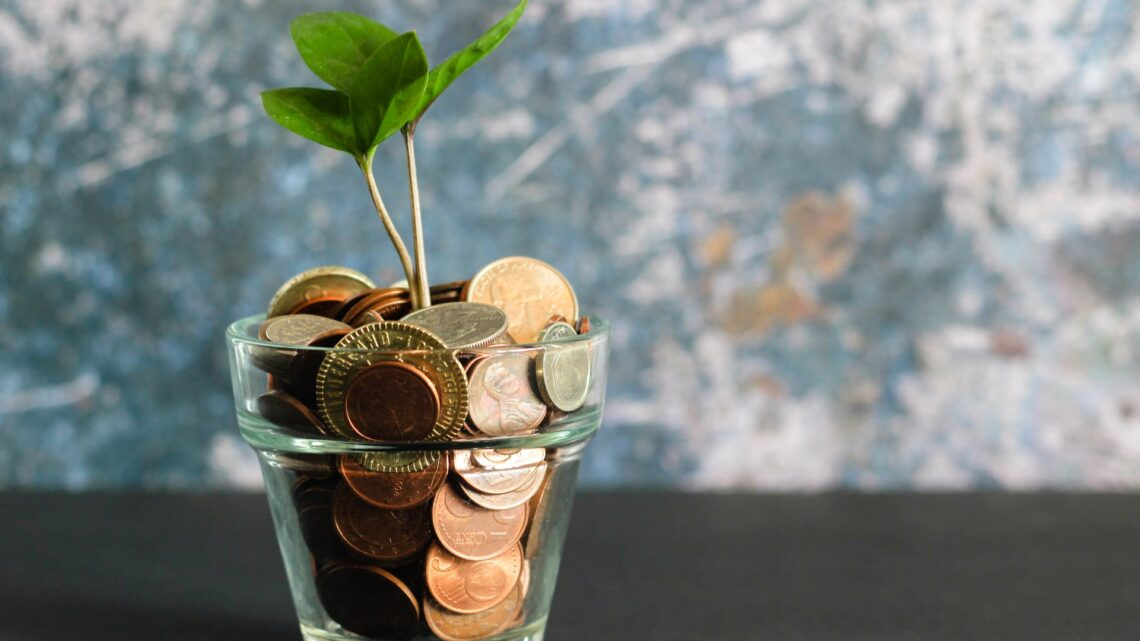 Ny tjeneste sammenligner lån for dig